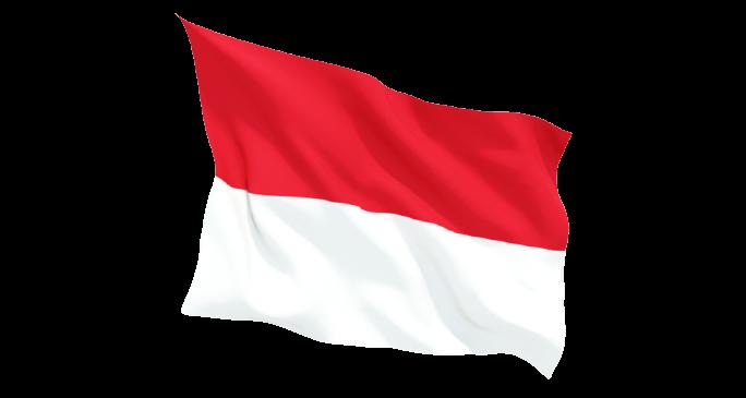 4697492-flag-of-indonesia-flag-of-indonesia-clip-art-flag-png-download-flag-of-indonesia-png-900_480-removebg-preview